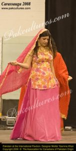 Glimpses of Fashion Show